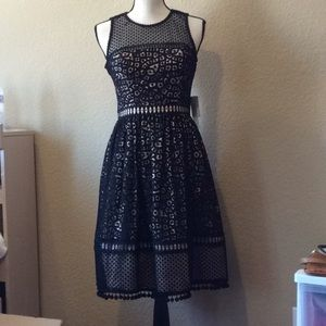 Eliza J Black Lace Dress